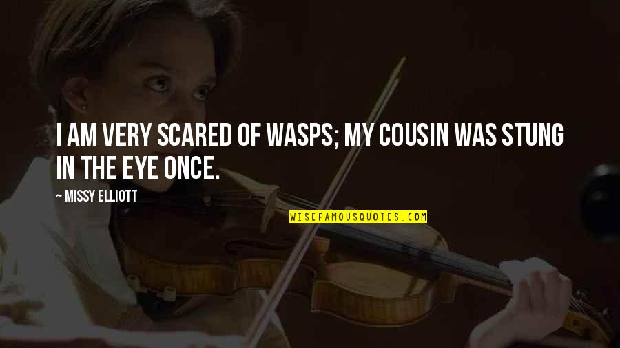 I Am Scared Quotes By Missy Elliott: I am very scared of wasps; my cousin