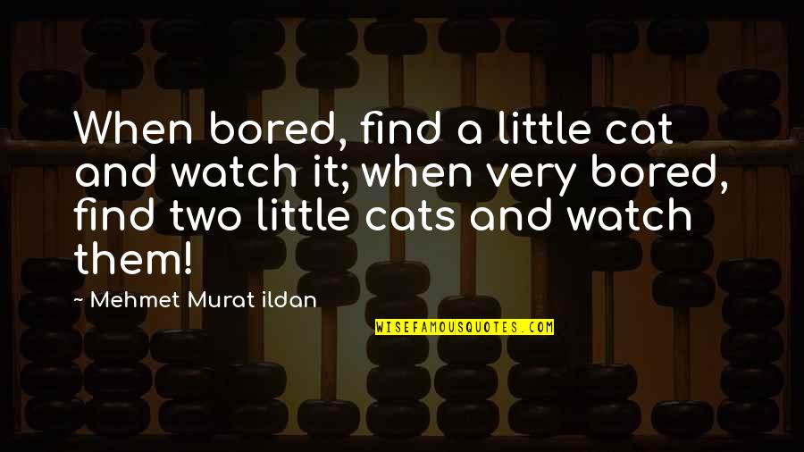 I Am So Bored Quotes By Mehmet Murat Ildan: When bored, find a little cat and watch