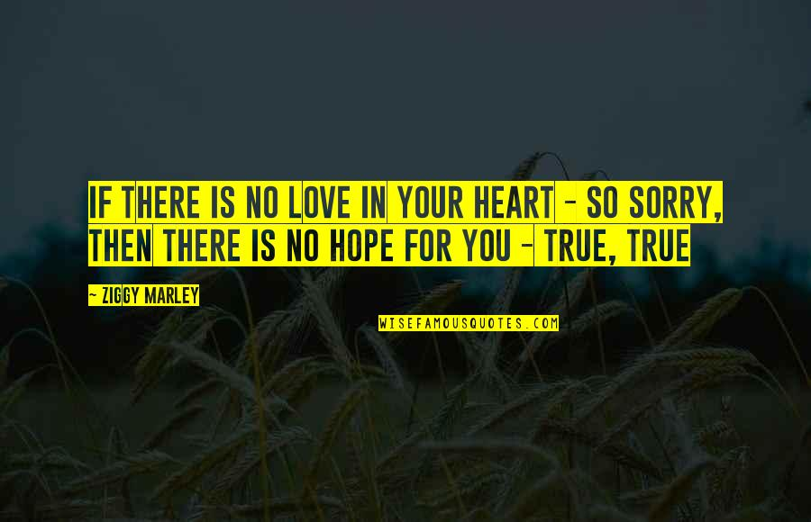 I Am Sorry Love Quotes By Ziggy Marley: If there is no love in your heart