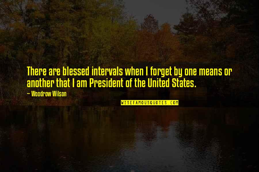I Am There Quotes By Woodrow Wilson: There are blessed intervals when I forget by