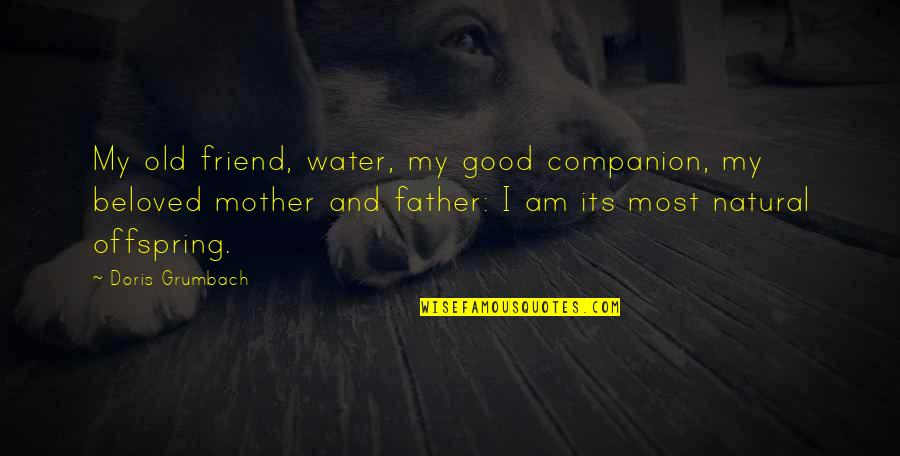 I Am Water Quotes By Doris Grumbach: My old friend, water, my good companion, my