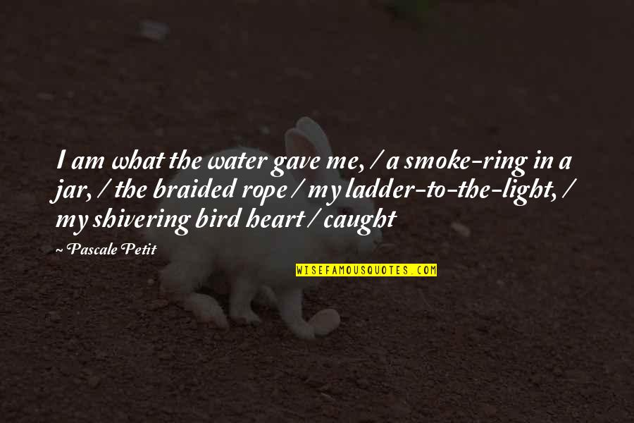 I Am Water Quotes By Pascale Petit: I am what the water gave me, /