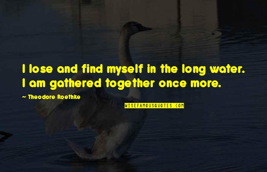 I Am Water Quotes By Theodore Roethke: I lose and find myself in the long