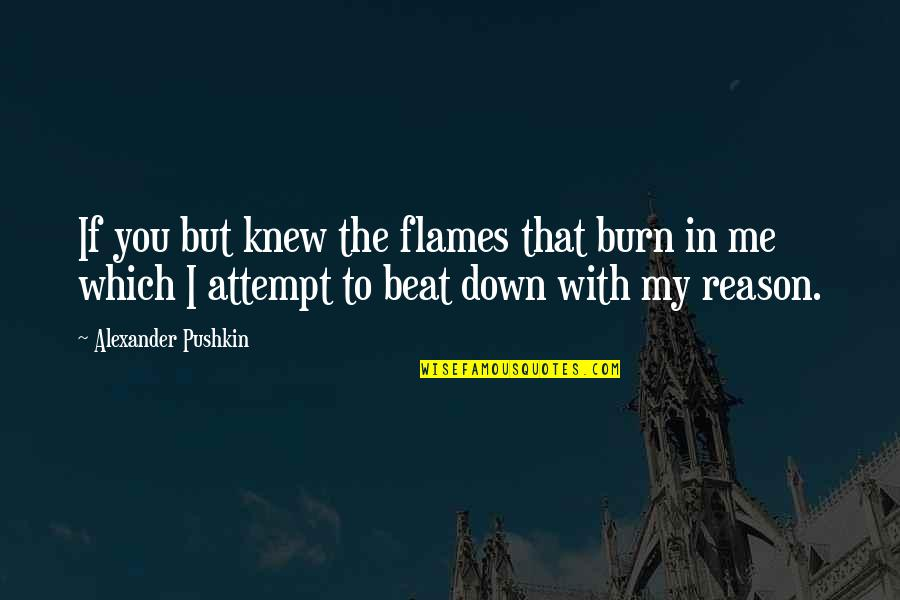 I Beat You Quotes By Alexander Pushkin: If you but knew the flames that burn