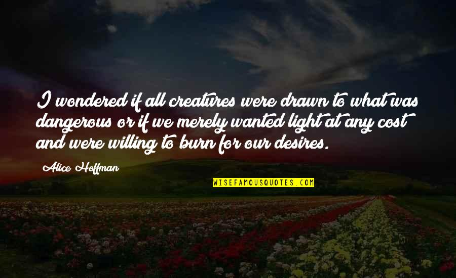 I Burn Quotes By Alice Hoffman: I wondered if all creatures were drawn to
