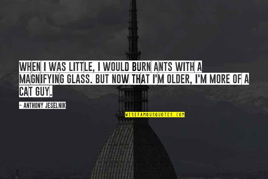 I Burn Quotes By Anthony Jeselnik: When I was little, I would burn ants