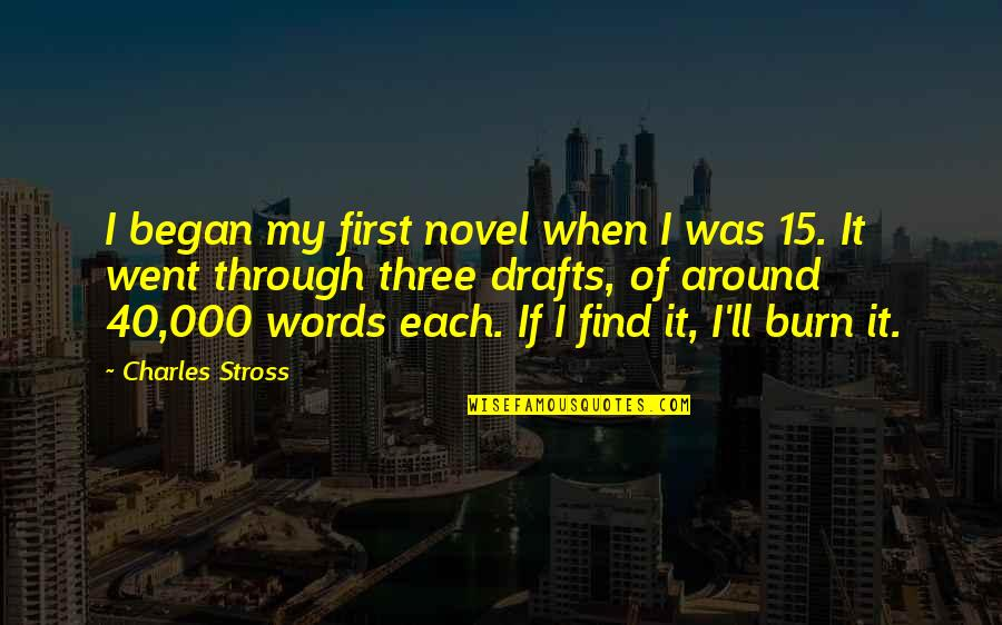 I Burn Quotes By Charles Stross: I began my first novel when I was