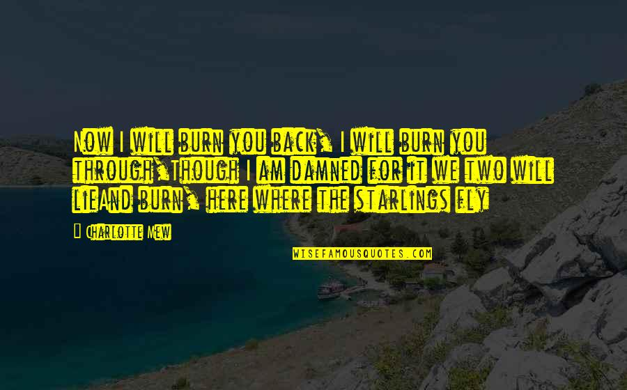 I Burn Quotes By Charlotte Mew: Now I will burn you back, I will