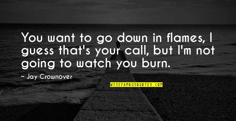 I Burn Quotes By Jay Crownover: You want to go down in flames, I