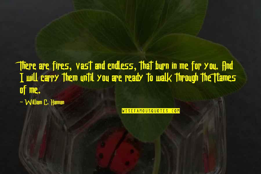 I Burn Quotes By William C. Hannan: There are fires, vast and endless, that burn