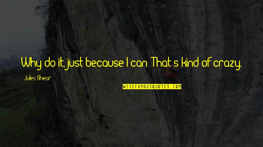 I Can Do It Quotes By Jules Shear: Why do it, just because I can? That's