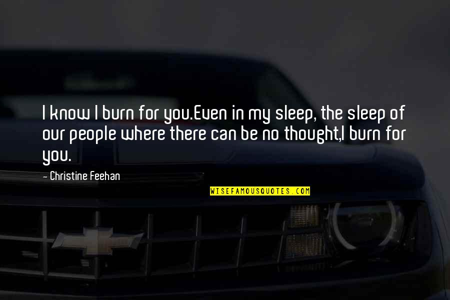 I Can't Be There For You Quotes By Christine Feehan: I know I burn for you.Even in my