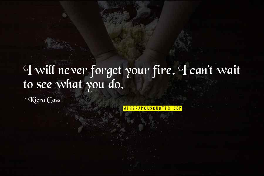 I Can't Forget You Quotes By Kiera Cass: I will never forget your fire. I can't
