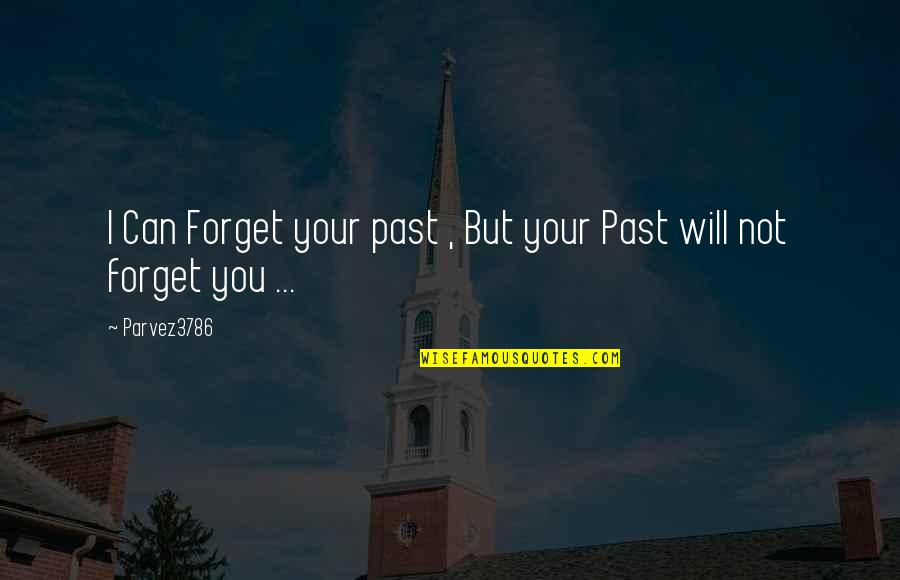 I Can't Forget You Quotes By Parvez3786: I Can Forget your past , But your