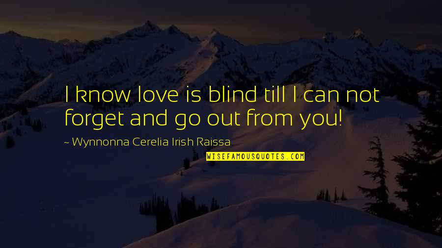 I Can't Forget You Quotes By Wynnonna Cerelia Irish Raissa: I know love is blind till I can