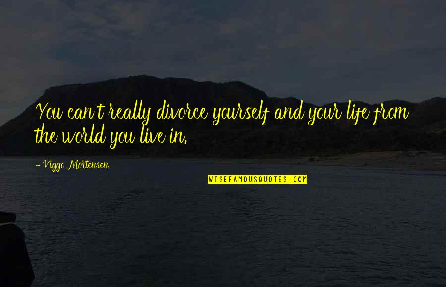 I Can't Live My Life Without You Quotes By Viggo Mortensen: You can't really divorce yourself and your life