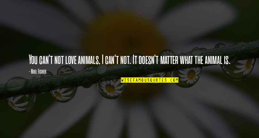 I Can't Love You Quotes By Noel Fisher: You can't not love animals, I can't not.