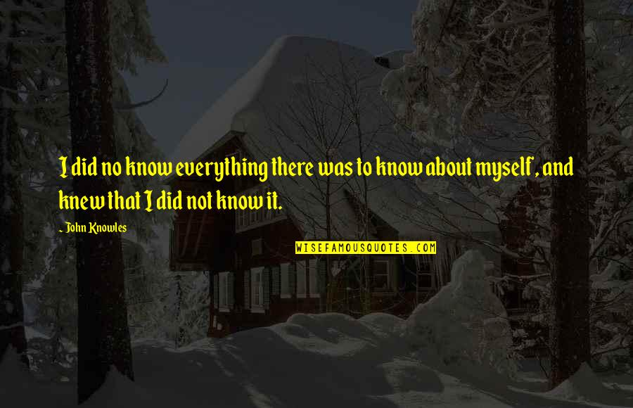 I Did Not Know Quotes By John Knowles: I did no know everything there was to