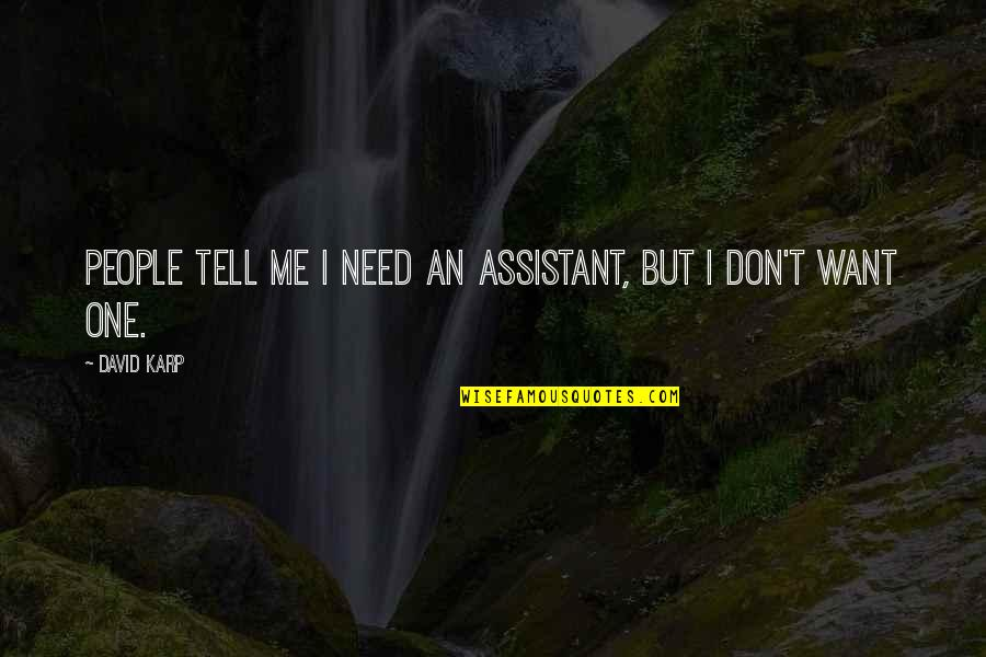 I Don't Need You I Just Want You Quotes By David Karp: People tell me I need an assistant, but