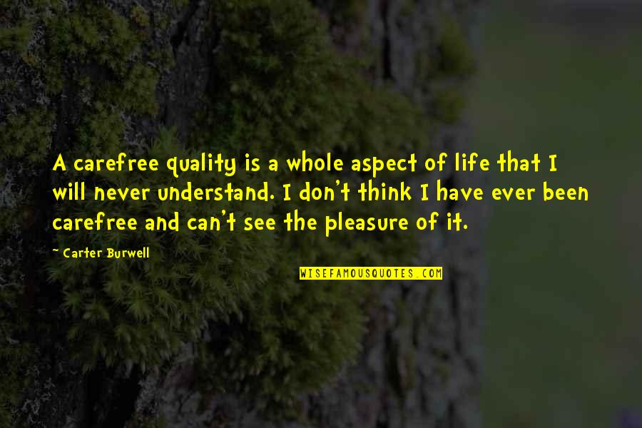 I Don't Understand Life Quotes By Carter Burwell: A carefree quality is a whole aspect of