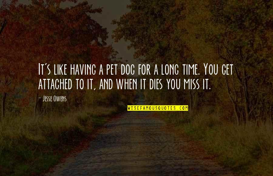 I Get Attached Quotes By Jesse Owens: It's like having a pet dog for a