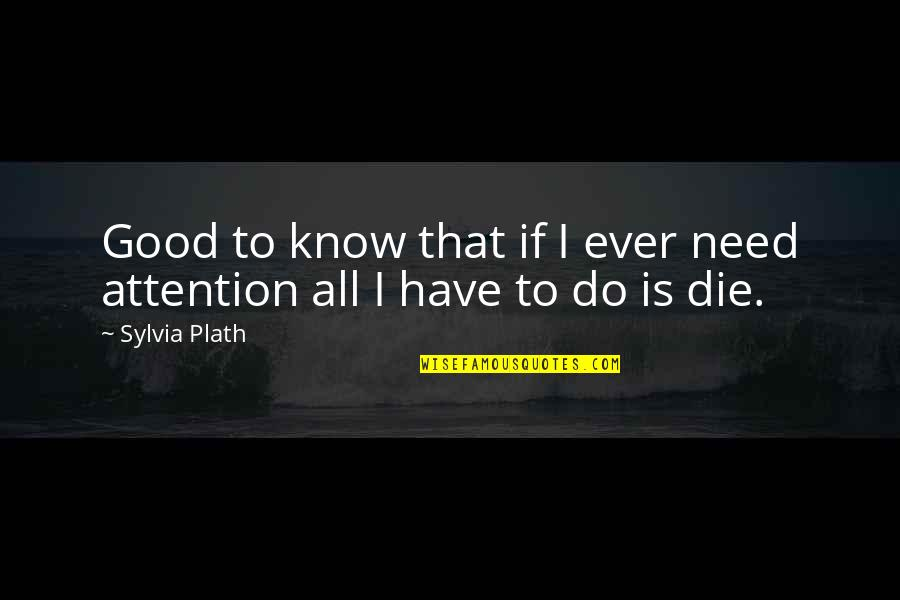I Have All I Need Quotes By Sylvia Plath: Good to know that if I ever need