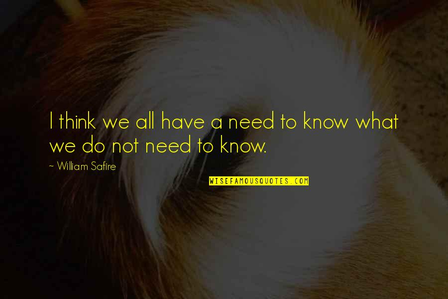 I Have All I Need Quotes By William Safire: I think we all have a need to