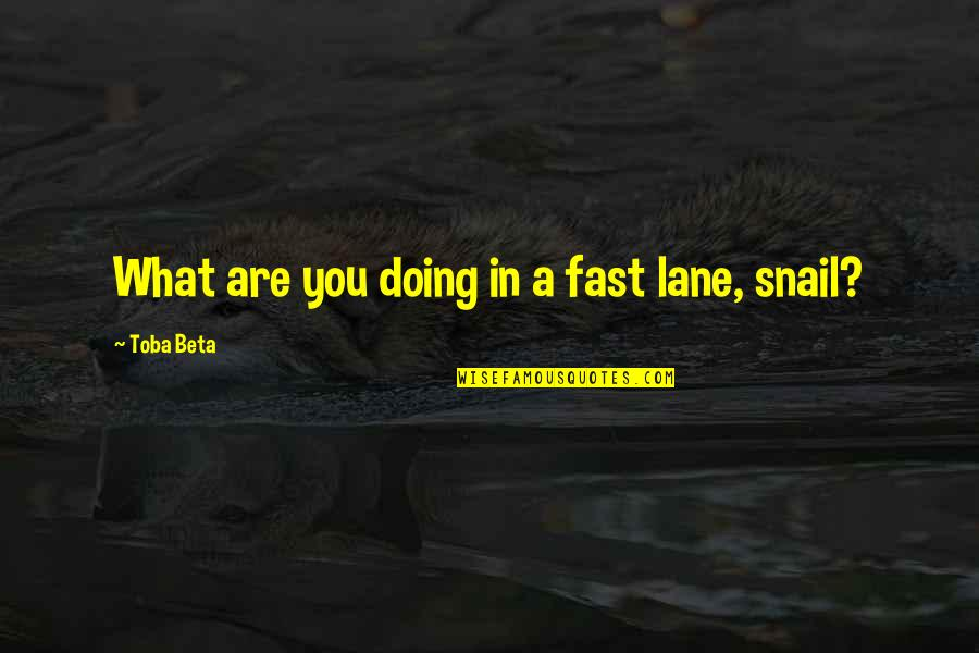 I Have Lost Trust Quotes By Toba Beta: What are you doing in a fast lane,