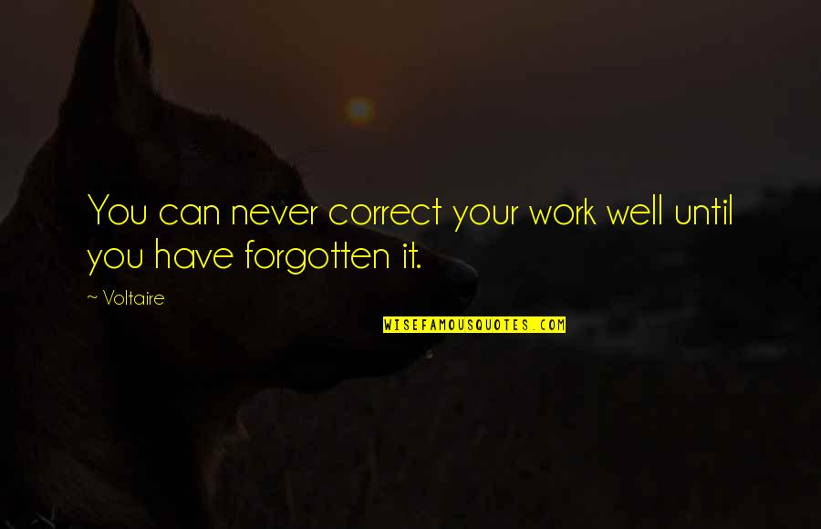 I Have Never Forgotten You Quotes By Voltaire: You can never correct your work well until