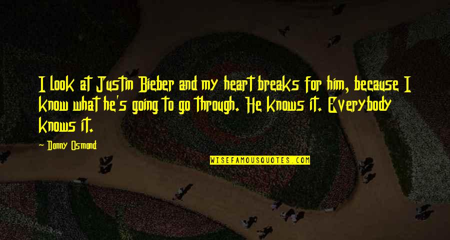 I Heart Him Quotes By Donny Osmond: I look at Justin Bieber and my heart