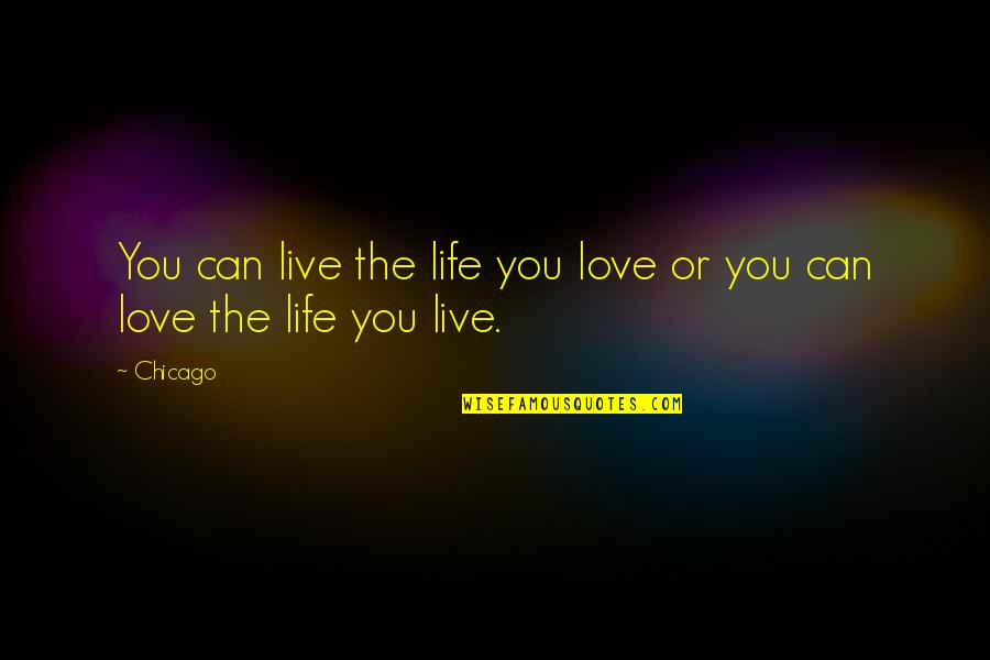 I Just Can't Live Without You Quotes By Chicago: You can live the life you love or