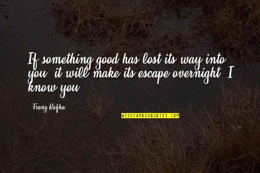 I Know I Lost You Quotes By Franz Kafka: If something good has lost its way into