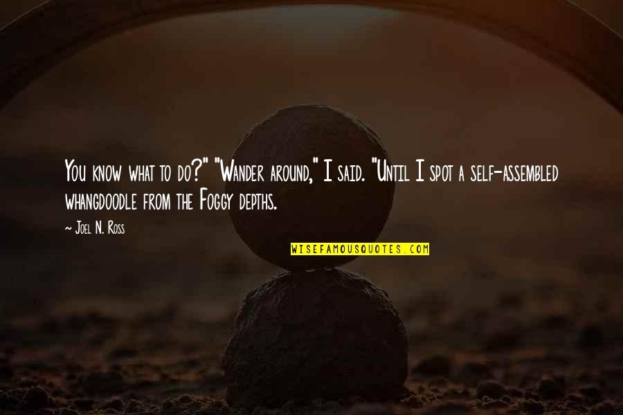 "I Know I Lost You Quotes By Joel N. Ross: You know what to do?"" ""Wander around,"" I"