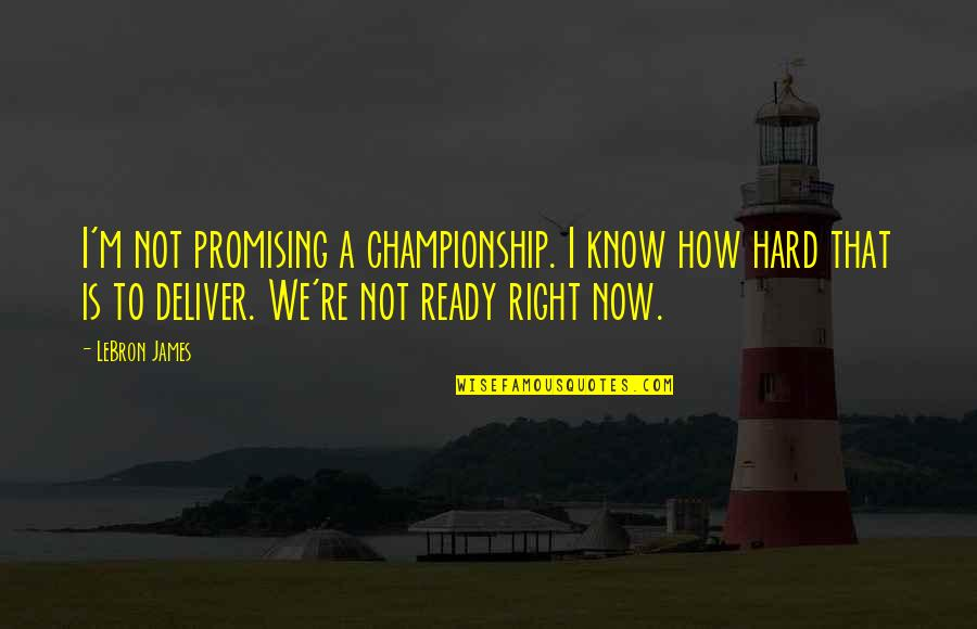 I Know I'm Right Quotes By LeBron James: I'm not promising a championship. I know how