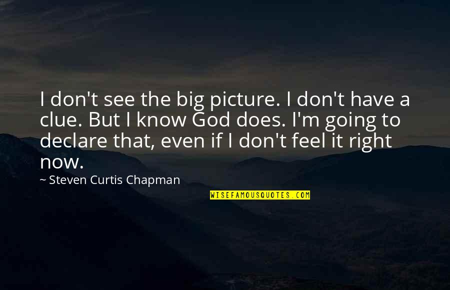 I Know I'm Right Quotes By Steven Curtis Chapman: I don't see the big picture. I don't