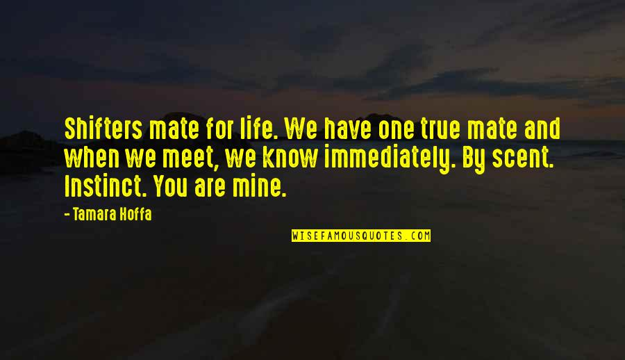 I Know U R Not Mine Quotes By Tamara Hoffa: Shifters mate for life. We have one true