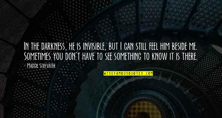 I Know You Still Love Me Quotes By Maggie Stiefvater: In the darkness, he is invisible, but I