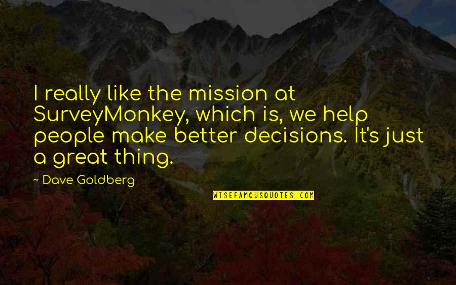 I Like Quotes By Dave Goldberg: I really like the mission at SurveyMonkey, which