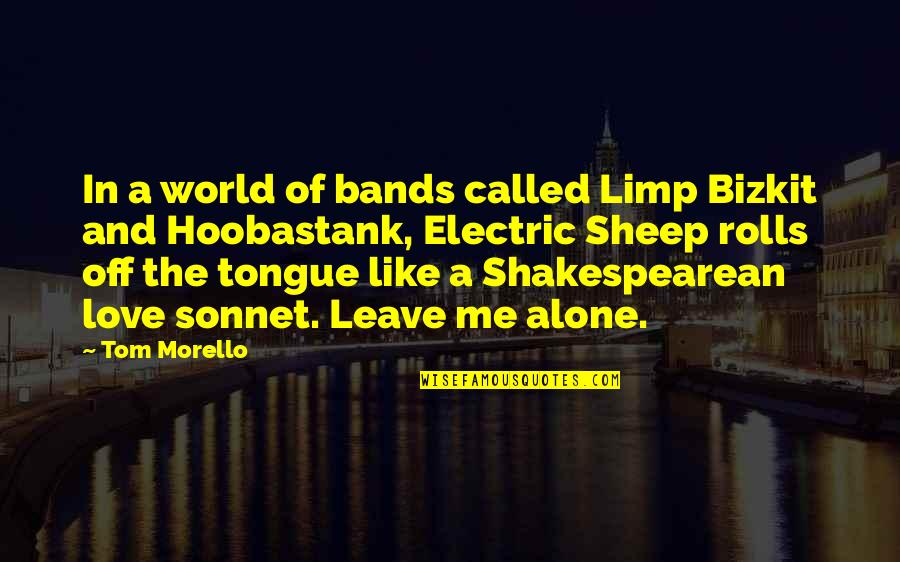 I Love Bands Quotes By Tom Morello: In a world of bands called Limp Bizkit