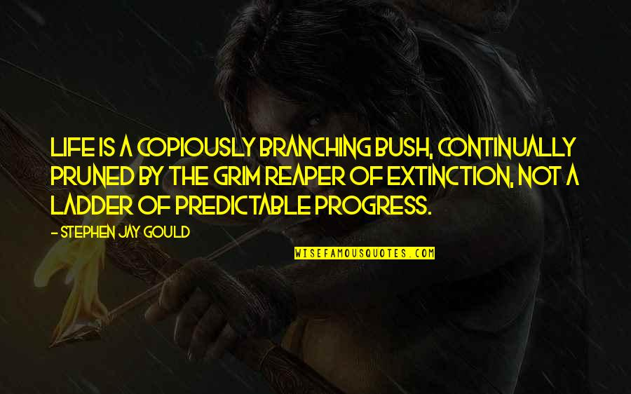 I Love My Husband Poems And Quotes By Stephen Jay Gould: Life is a copiously branching bush, continually pruned