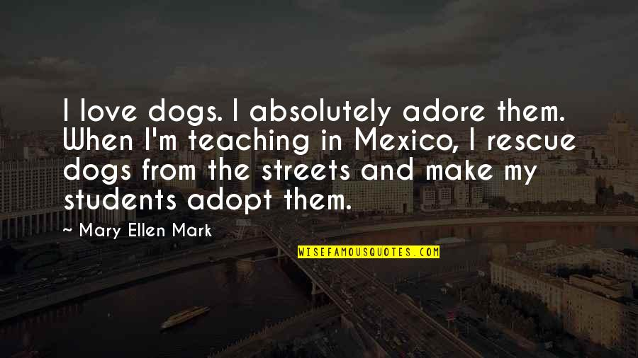 I Love My Students Quotes By Mary Ellen Mark: I love dogs. I absolutely adore them. When