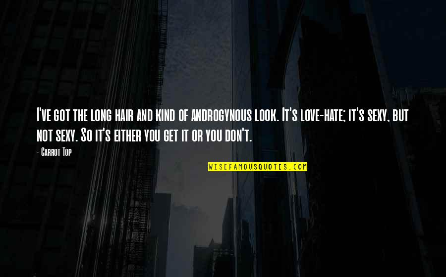 I Love You But Hate You Quotes By Carrot Top: I've got the long hair and kind of