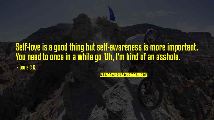I Love You But Hate You Quotes By Louis C.K.: Self-love is a good thing but self-awareness is