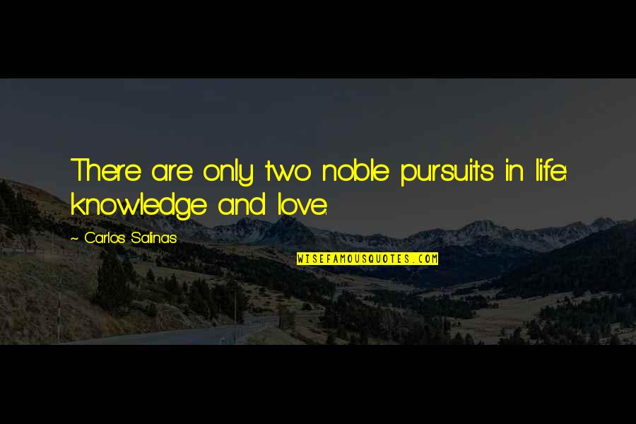 I Love You Come What May Quotes By Carlos Salinas: There are only two noble pursuits in life: