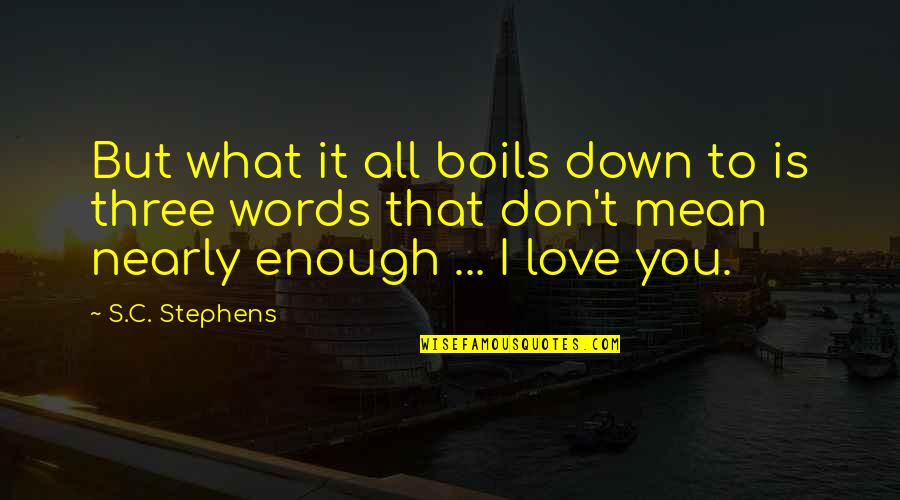 I Love You Mean Quotes By S.C. Stephens: But what it all boils down to is