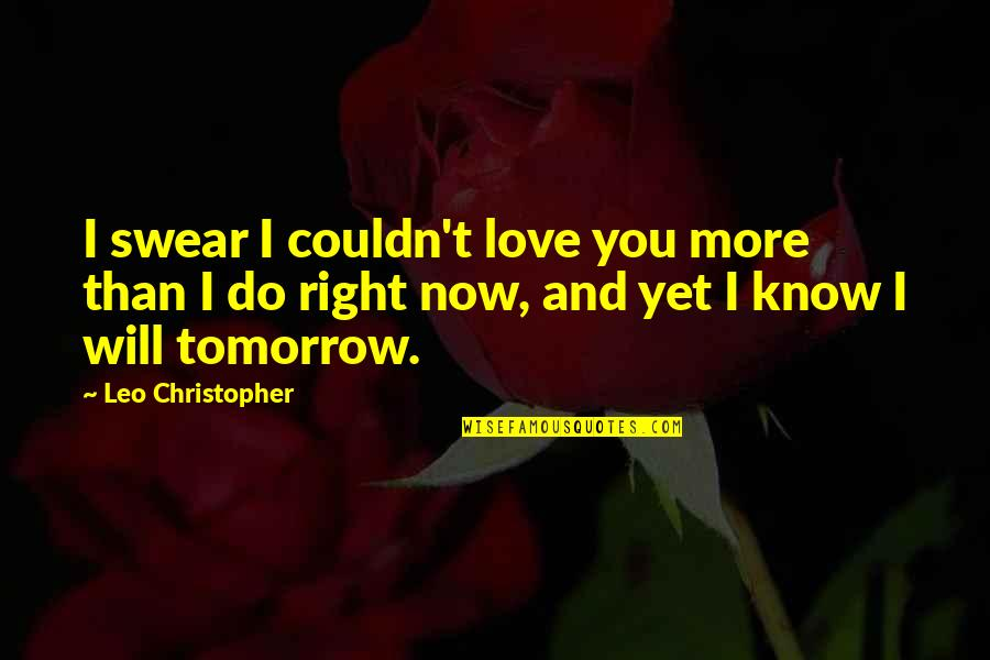 I Love You More Than You Know Quotes By Leo Christopher: I swear I couldn't love you more than