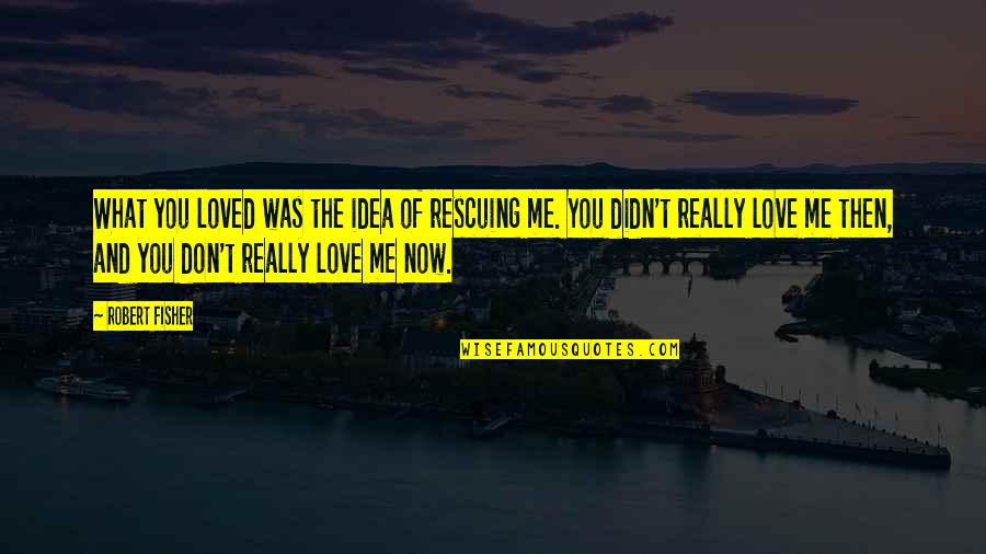 I Loved You But You Didn't Love Me Quotes By Robert Fisher: What you loved was the idea of rescuing