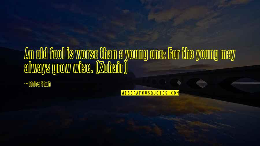 I May Be Young But Quotes By Idries Shah: An old fool is worse than a young