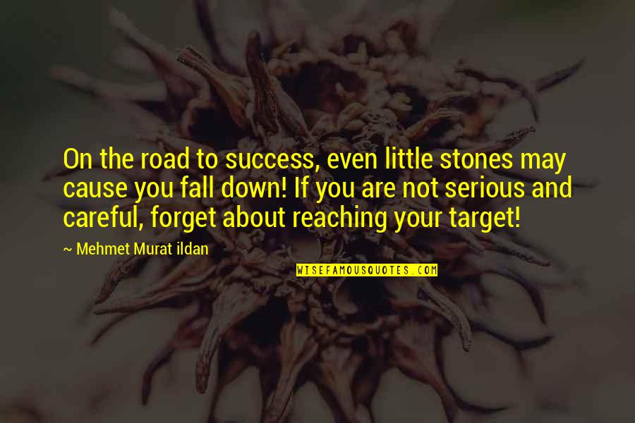 I May Fall Quotes By Mehmet Murat Ildan: On the road to success, even little stones