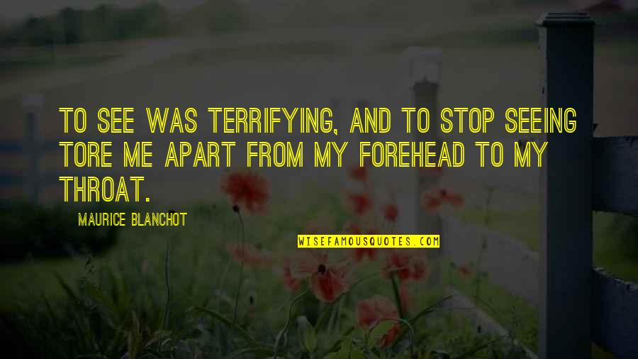 I May Not Be Perfect Funny Quotes By Maurice Blanchot: To see was terrifying, and to stop seeing